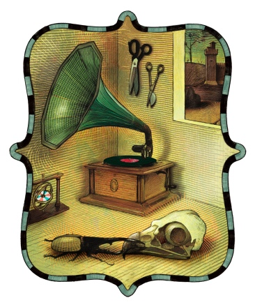 Still Life with Gramophone & Hercules Beetle